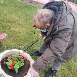 Plantar flores en el jardin de la residencia de mayores