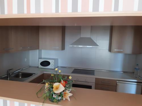 Apartamentos para mayores Emera Guadalajara-cocina